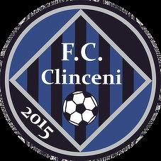 Academica Clinceni eS